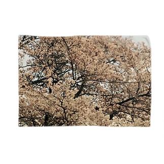 桜と星 ブランケット