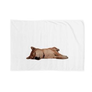 -犬- よこたわるみかん Blankets