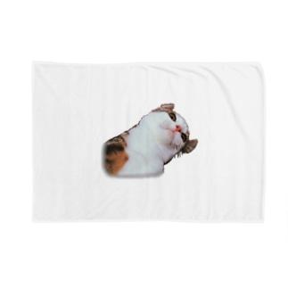むー❕ Blankets