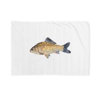 みなたびのフナ類(福井県産) Blankets