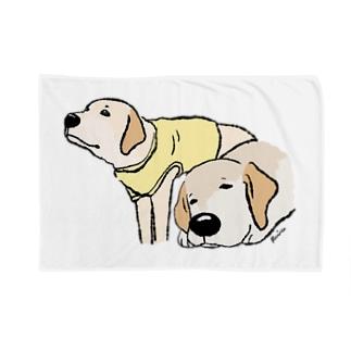 Dog Drawer Drawn by Dogのスヤスヤジンジャーさんとキリリニコさん Blankets