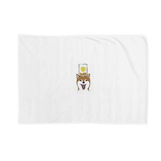 shibainu999の犬 Blankets