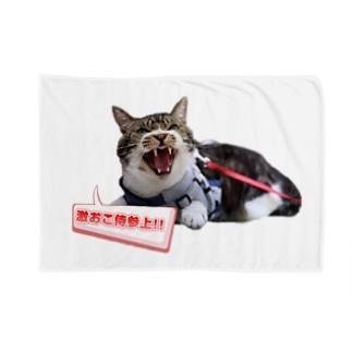 真・激おこ侍シリーズ Blankets