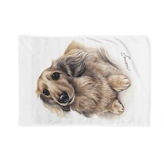 Momojiの犬画のダックス6 Blankets