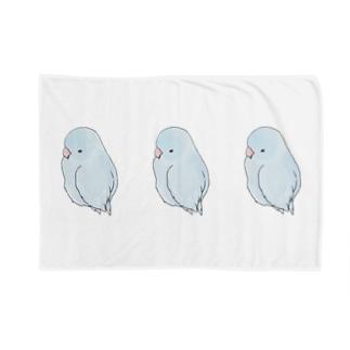 可愛いアメリカンホワイト マメルリハちゃん【まめるりはことり】 Blankets
