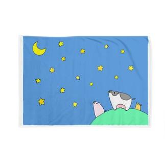 丘の上のお星さま鑑賞会 Blankets
