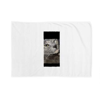 ウィンク猫 Blankets