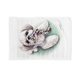 Momojiの犬画のシーズー70 Blankets