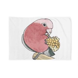 まめるりはことりのモモイロインコちゃんとトウモロコシ【まめるりはことり】 Blankets