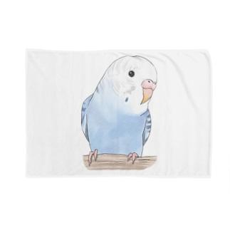 おしゃまな止まり木セキセイインコちゃん【まめるりはことり】 Blankets