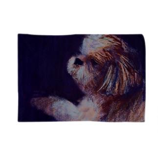 yoinu-ryoudogの犬. moonlight Blankets