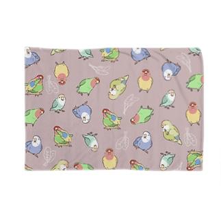 いろいろインコ Blankets