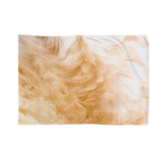 犬毛並 Blankets