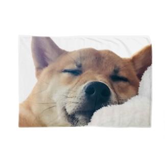 おやすみ日向さん Blanket