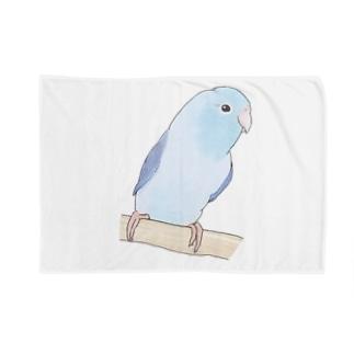 おしゃまなマメルリハのるりちゃん【まめるりはことり】 Blanket