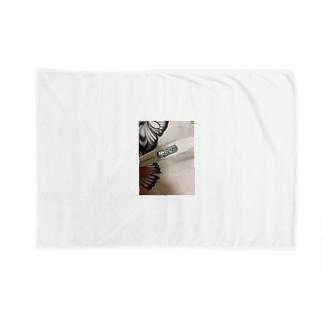 38.4ぶ Blankets