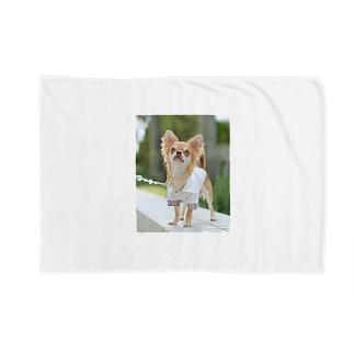 愛犬グッズ(sampleご購入不可) Blankets