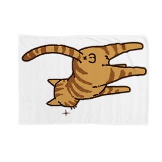 ねこけつω(茶トラ) Blankets