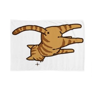 ねこけつ(茶トラ) Blankets