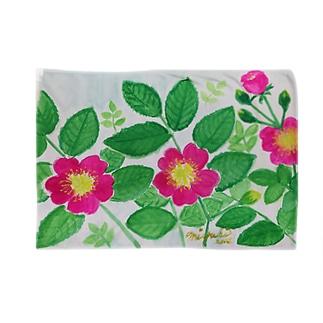 華やぐ季節      野ばら Blankets