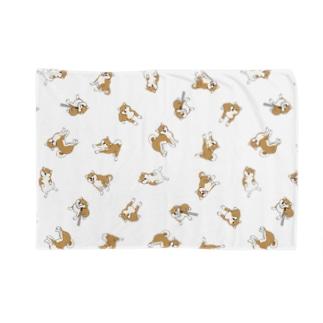 柴犬いっぱい Blankets