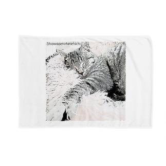 たねたねClub〜しあわせの種たちの元保護猫の小鉄くん Blankets