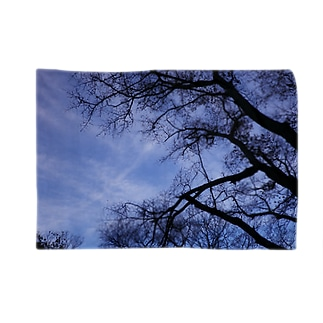 Deep forest2 Blankets