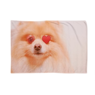 恋するポメラニアン Blankets