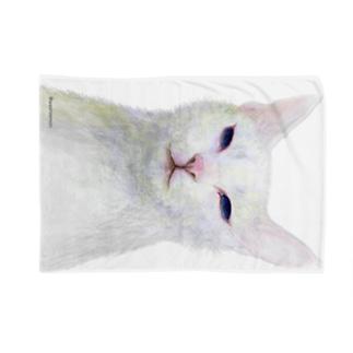白い猫 Blankets