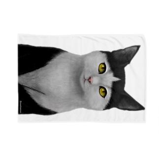 ぱっつん猫 Blankets