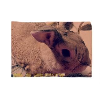 うさぎのゆんた1歳 Blankets