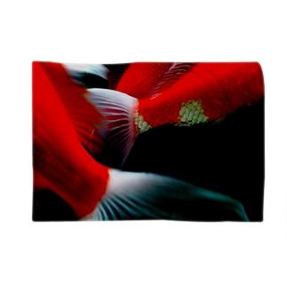 錦鯉の鰭 Blankets