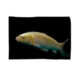 金色の錦鯉 Blankets