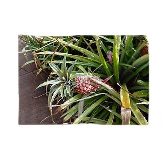 ハワイ景色・パイナップル Blankets
