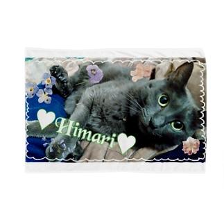 愛猫ひまり弐 Blankets