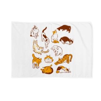 雲猫 Blankets