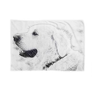 犬 スケッチ  Blankets