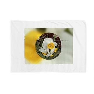 光景 sight735 水仙 花 FLOWERS  宙玉(そらたま) Blankets
