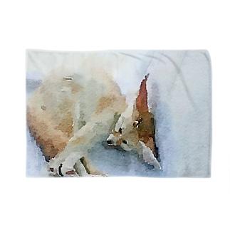 フェネックブランケット Blankets