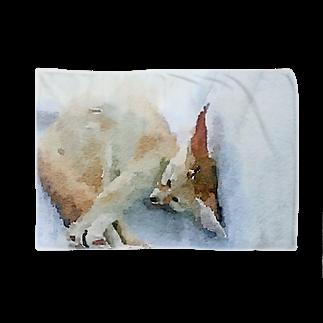 フェネックランドのフェネックブランケット Blankets
