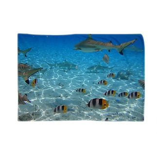 BoraBora Blankets