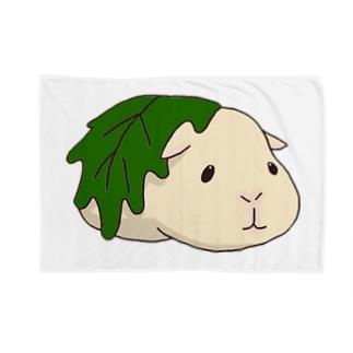 かしわモルモット Blankets