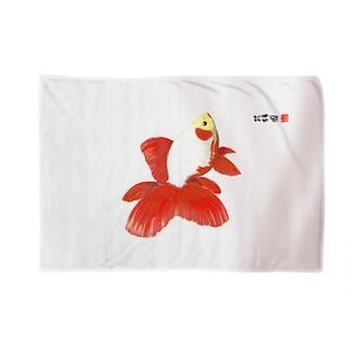 【金魚】東海錦 ブランケット