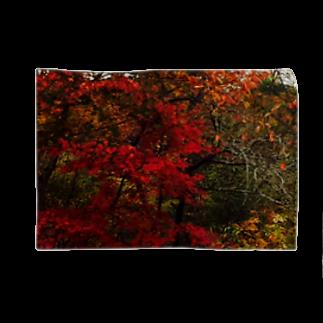 Luckyemeの赤木ブランケット