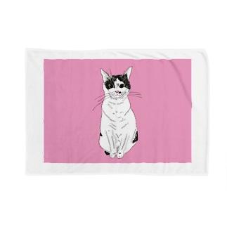 みーこおすわりイラスト 猫 白黒猫 保護猫 イラスト Blankets