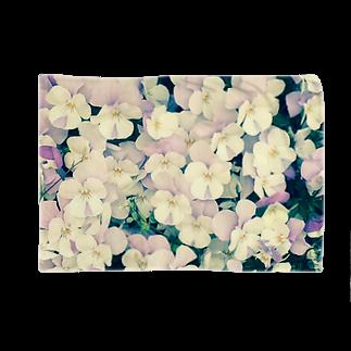 淡紫白パンジー ブランケット