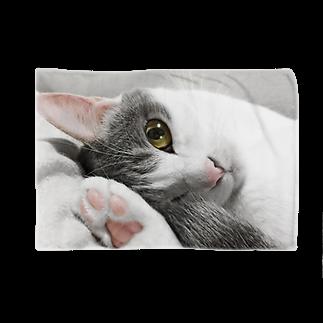 COMONOのまどろみ猫 ブランケット