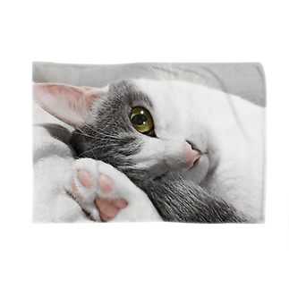 COMONOのまどろみ猫 Blankets