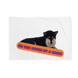 マムシ柴犬2 Blankets