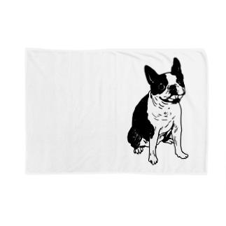 rin05w Blankets